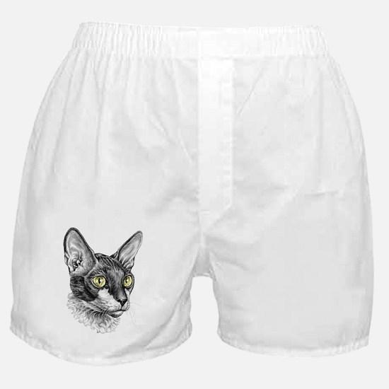 Cornish Rex Sketch Boxer Shorts