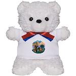 St Francis #2/ R Rback #2 Teddy Bear