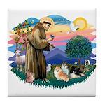 St Francis #2/Pomeranians(3) Tile Coaster
