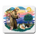 St Francis #2/Pomeranians(3) Mousepad