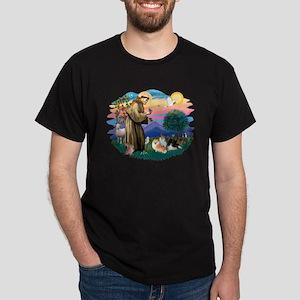 St Francis #2/Pomeranians(3) Dark T-Shirt