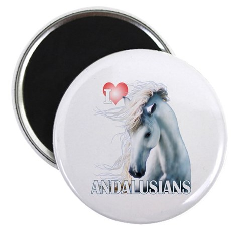 I Love Andalusians Magnet