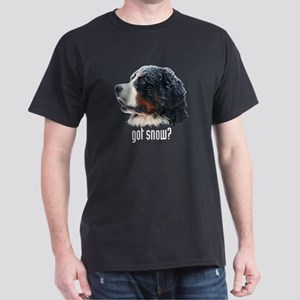 got snow? Dark T-Shirt