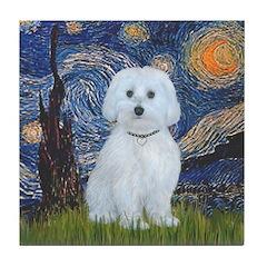 Starry / Maltese (B) Tile Coaster