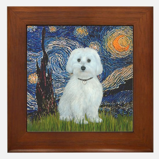 Starry / Maltese (B) Framed Tile