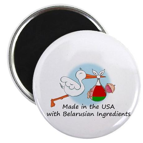 Stork Baby Belarus USA Magnet