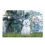 Lilies #1 - Maltese (B) Postcards (Package of 8)