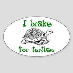 Turtles - Sticker (Oval)