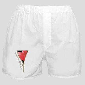 Zipper Design 2 Boxer Shorts