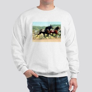 Harness horse racing trotter present gift idea Swe