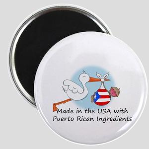 Stork Baby Puerto Rico USA Magnet