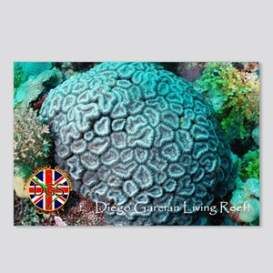 DGS Living Reef 3! Postcards (Package of 8)