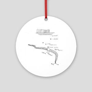 earthworm anatomy Ornament (Round)