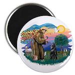 St Francis #2/ Belgian Shep Magnet