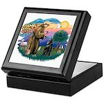 St Francis #2/ Belgian Shep Keepsake Box