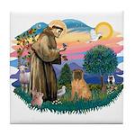 St Francis #2/ Shar Pei (#3) Tile Coaster