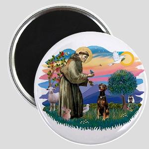 St Francis #2/ Doberman Magnet