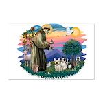 St Francis #2/ Fr Bulldogs (3) Mini Poster Print