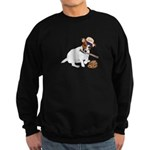 Fun JRT product, Baseball Fever Sweatshirt (dark)