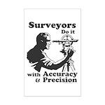 SurveyorsDoIt Mini Poster Print