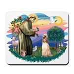 St Francis #2/ Afghan Hound Mousepad