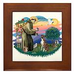 St Francis #2/ Boxer (nat ears) Framed Tile