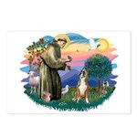 St Francis #2/ Boxer (crop.) Postcards (Package of