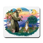 St Francis #2/ Boxer (crop.) Mousepad