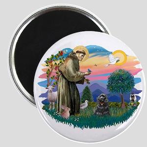 St Francis #2/ Cocker (blk) Magnet