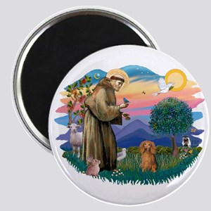 St Francis #2/ Dachshund (LH S) Magnet