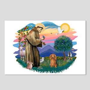 St Francis #2/ Dachshund (LH S) Postcards (Package