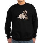 Fun JRT product, Baseball Fever Sweatshirt (dark)