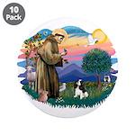 St Francis #2/ Cavalier (tri) 3.5