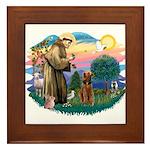 St Francis #2/ Airedale Framed Tile