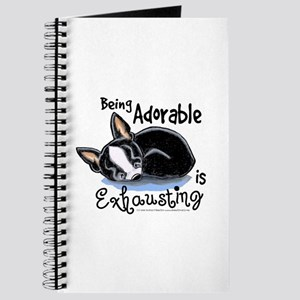 Boston Being Adorable Journal