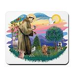 St Francis #2/ Yorkie #7 Mousepad