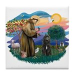 St Francis #2/ Bouvier Tile Coaster