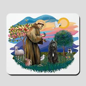 St Francis #2/ Bouvier Mousepad