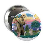 St Francis #2/ Tibetan Span (f) 2.25