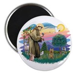 St Francis #2/ Silky (B) Magnet