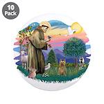 St Francis #2/ Silky (B) 3.5