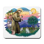 St Francis #2/ Pomeranian (s&w) Mousepad