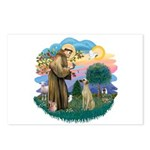 St Francis #2/ Sloughi Postcards (Package of 8)