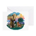St Francis #2/ Novia Scotia Duck Greeting Cards (P
