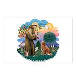 St Francis #2/ Novia Scotia Duck Postcards (Packag