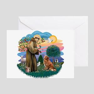 St Francis #2/ Novia Scotia Duck Greeting Card