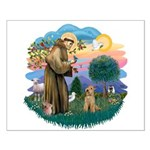 St Francis #2/ Lakeland T Small Poster