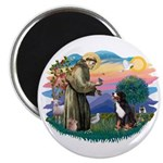 St Francis #2/ BMD Magnet