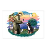 St Francis #2/ BMD Postcards (Package of 8)