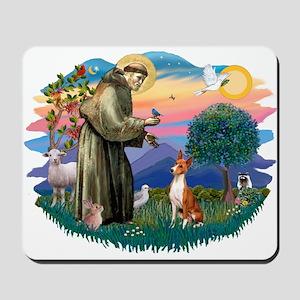 St Francis #2/ Basenji Mousepad
